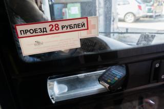 Фото: PRIMPRESS   СберБанк: Количество оплаченных банковской картой поездок в транспорте выросло почти в 2,4 раза