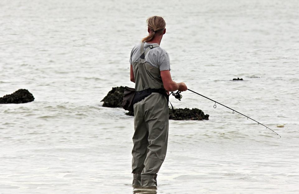 «Сбежала из океанариума»: необычную рыбу поймали у кампуса ДВФУ