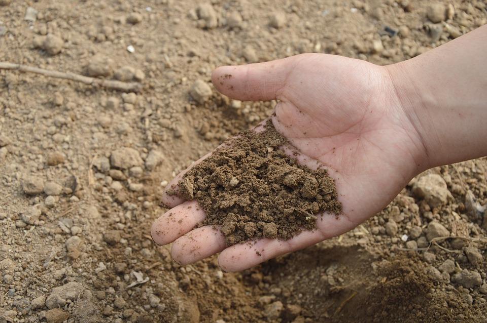 Приморский край возглавил рейтинг регионов с самой загрязненной почвой
