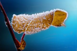 Фото: pixabay.com | В России «рухнут» столбики термометров. Синоптики назвали дату