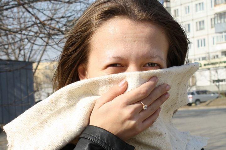 Пыльца амброзии и полыни отравляет жизнь аллергикам Владивостока