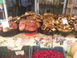 Фото: Ксения Снежинская   Приморские грибники продают свой урожай за бешеные деньги на рынках Владивостока