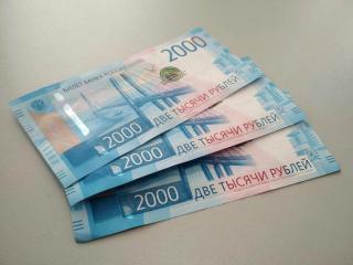 Фото: PRIMPRESS | «Нужно успеть до 1 сентября». В МФЦ принимают заявления на новую выплату