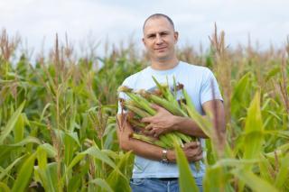Фото: freepik.com | Приморские фермеры могут получить до 30 миллионов рублей на реализацию своих проектов