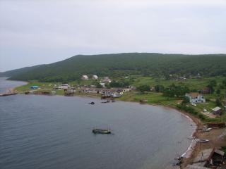 Фото: Wikipedia/LxAndrew | «Просто очуметь»: на фото показали, что появилось на острове Попова в Приморье