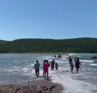 Фото: @irecommend_vdk   «Где этот остров?»: видео с острова набирает популярность в Приморье