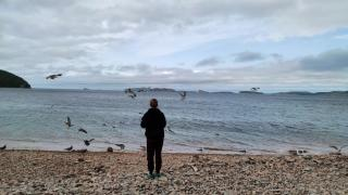 Фото: PRIMPRESS   Приморцы бурно обсуждают фото, сделанное на одном из популярных островов края