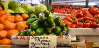 Фото: PRIMPRESS   Приморцы могут продать остатки овощей и фруктов со своих участков на бесплатных площадках во Владивостоке