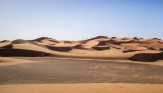 Фото: freepik.com | Удивительную находку обнаружили ученые в Египте