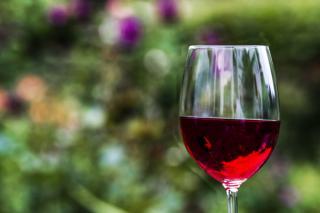 Фото: pixabay.com | Эксперты рассказали, чем опасен бокал вина