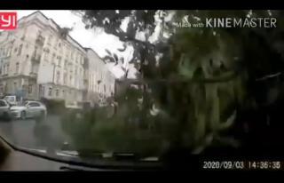 Фото: кадр из видео | Появилось то самое видео первой жертвы тайфуна «Майсак» во Владивостоке