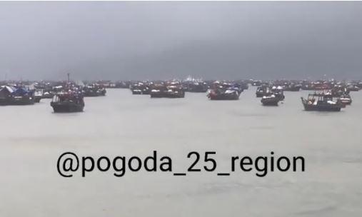 «Напоминает начало интервенции в 1917-м»: что происходит на побережье Приморья