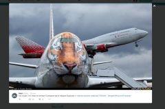 Во Владивостоке приземлился самолет в тигриной раскраске