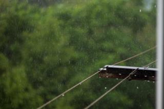 Фото: PRIMPRESS   В Приморье в ближайшие сутки пройдут дожди различной степени интенсивности
