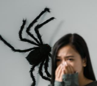Фото: freepik.com | «Меня сейчас стошнит, уберите»: у впечатлительных приморцев появилась новая фобия