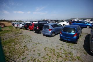 Фото: PRIMPRESS   В Приморье 26 многодетных семей получили компенсацию на приобретение автомобилей