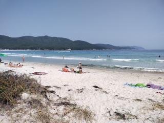 Фото: PRIMPRESS   Будет жарко: приморцы смогут провести эти выходные на море