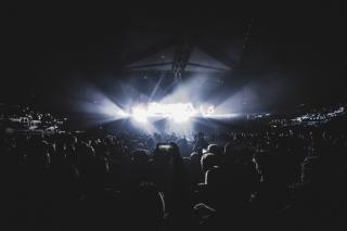 Фото: pexels.com | «Штрафовать их надо»: приморцы обсуждают ночные собрания в одном из спальных районов Владивостока