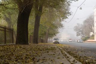 Фото: Татьяна Меель / PRIMPRESS | Ветрено и прохладно: синоптики рассказали о погоде в Приморье на сегодня