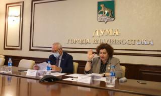 Фото: dumavlad.ru | В Думе Владивостока рассмотрели проекты о контроле в ряде сфер городского хозяйства