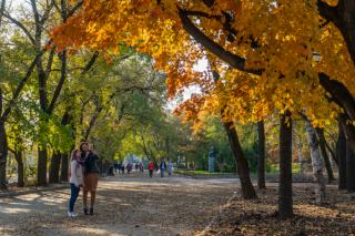 Фото: Татьяна Меель / PRIMPRESS | Акция «Золотая осень» стартовала в Примсоцбанке
