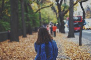 Фото: pixabay.com | Школьник решил проводить одноклассницу до дома и чуть не лишился жизни