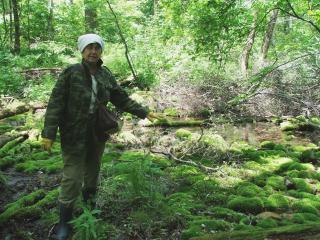 Научный сотрудник Уссурийского заповедника:  «Заповедный лес - это добрый мир»