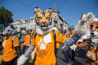 Фото: PRIMPRESS   Мэрия Владивостока запатентует бренд «День тигра»