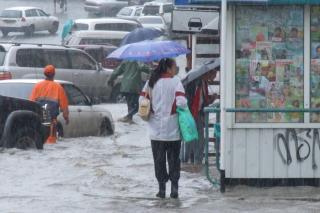 Фото: PRIMPRESS   В ближайшие сутки в Приморье пройдут дожди различной интенсивности