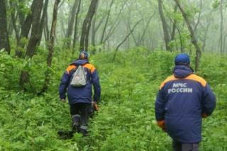 В Приморье ищут пропавшую в лесу женщину