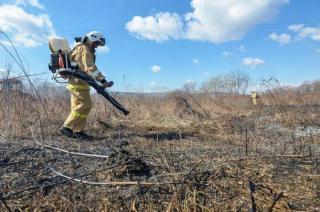 На территории Приморья действуют 14 лесных пожаров