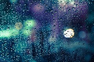 Фото: freepik.com | В Приморье следующая неделя начнется с дождей