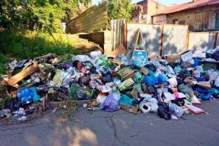 Необычного зверя в мусорном пакете встретили жители Приморья