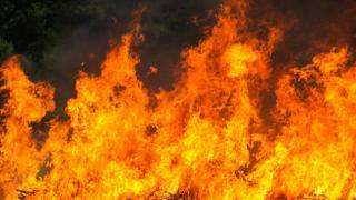 Фото: freepik.com | Озвучены подробности жуткого пожара в Приморье