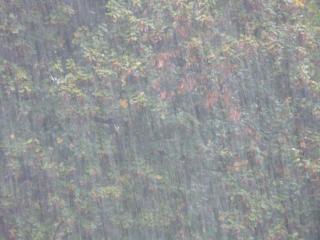 Фото: pixabay.com | Вероятность 100%: приморцам рассказали о погоде в первый понедельник октября