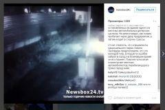 Фото: Скриншот Instagram/newsbox24.tv | Тигр, прогуливающийся по улицам в Приморье, стал звездой Интернета