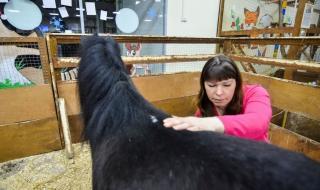 Что станет с контактными зоопарками в Приморье?