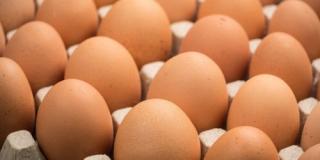 Фото: auchan.zakaz.ua | Питательные и полезные: яйца в рационе человека