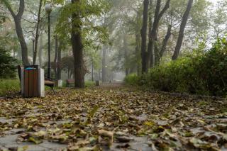 Фото: Татьяна Меель / PRIMPRESS   Тепло и без осадков: синоптики озвучили прогноз погоды на сегодня в Приморье