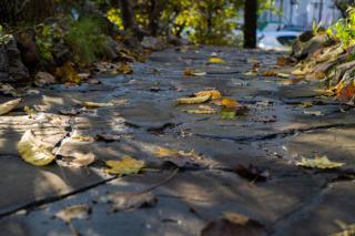 Фото: Татьяна Меель / PRIMPRESS | Завтра в Приморье пройдут дожди