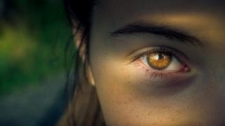 Фото: pixabay.com   10 фактов о зрении человека, о которых мало кто знает