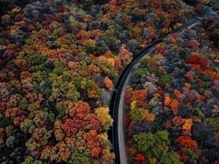 ФОТО ДНЯ: Приморье провожает золотую осень
