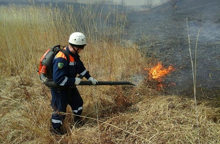 Восемь пожаров ликвидировано в Приморье за сутки