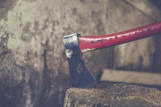 Фото: pixabay.com | В Приморье раскрыли детали жестокого убийства