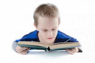 Фото: Pixabay   «Все познается на практике»: приморское образование выходит за рамки школьной доски