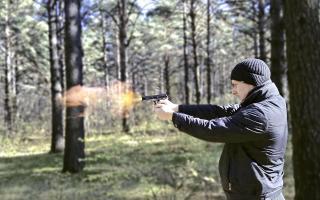 Фото: pixabay.com | Приморец пострелял в своего знакомого из пистолета