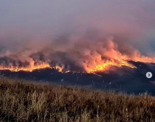 Фото: скриншот amurleo_land | Первый крупный пожар этой осени ликвидирован у границ «Земли леопарда»в Приморье