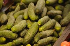 Киргизия хочет поставлять в Приморье натуральные продукты