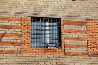 Фото: Мария Куценко | Контрактник из Приморья попал в колонию за сбыт наркотиков