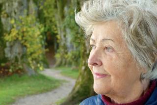 Фото: pixabay.com   Стало известно, какая будет пенсия, если нет трудового стажа